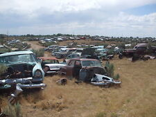 Salvage Yard full of 1950s junk cars 8 x 10 Photograph