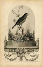 Framed Print - Victorian Vintage Bird in a Cloche Jar (Birdcage Picture Poster)