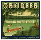 ORKIDEER Vintage Wabasso Florida Citrus Crate Label, **AN ORIGINAL FRUIT LABEL**