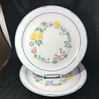 "Pair of Vintage VINA FERA Durasafe Radiance 10-3/4"" Dinner Plates"
