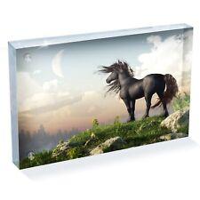 "Amazing Magic Black Horse Photo Block 6 x 4"" - Desk Art Office Gift #15701"