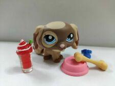 Littlest Pet Shop Lps#2570 King Charles Spaniel dog w/accessories