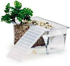 Reptile Retreat Ramp Kit for terrarium tartarium faunarium Turtles, Frogs, Newts