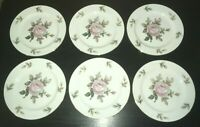 """(6) Noritake LYRIC Pink Rose 7 1/2"""" Salad Plates"""