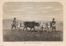 CHINE CHINA SEMOIR MECANIQUE AGRICULTURE GRAVURE ENGRAVING 1873