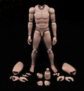 MX02-A 12inch Europe Skin Male Action Figure Body Fit For 1/6 Head Sculpt Toys
