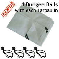 Tarpaulin Strengthened Waterproof Heavy Duty Clear Tarp Sheet and 4 Bungee Balls