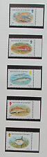 Guernsey Postage Stamps Fish  mint unmounted
