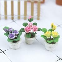Mini Flower Bonsai Mini Dollhouse Miniature Green Plant Fairy  Flower Pretty