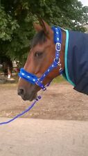 NEW Horse print fur padded headcollars halter + matching lead ROYAL BLUE FULL