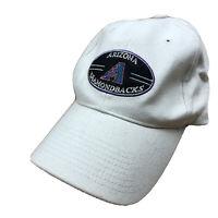 Arizona Diamondbacks Twins Enterprise Adjustable Hat, Vintage, One Size, Beige
