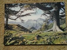 FIRST AD.J.ARTHUR DIXON.POSTCARD.LANGDALE PIKES FROM LINGMOOR FELL. NOT POSTED.