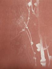 Papier peint Superfresco couleur Rouge Taille 10 05m x 0 53m Vinyl