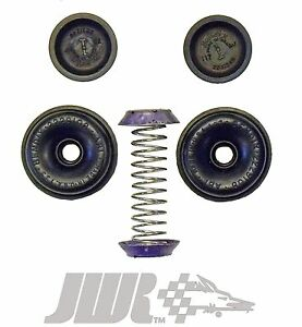 Wheel Cylinder Repair Kit 73-78 Ford LTD Mercury Marquis 72-76 Ford Thunderbird