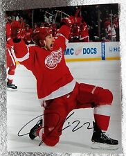 Detroit Red Wings Jordin Tootoo Signed 8x10 Photo Auto