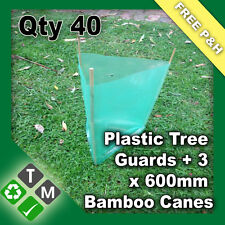 40 X Plastic Tree and Plant Guard Protection Sleeves & 120 X 600mm Bamboo Canes