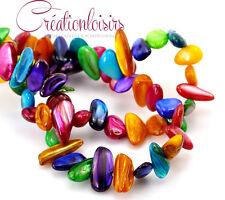 Perles chips multicolore en nacre de taille et forme irrégulière