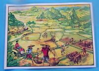 Décoration Murale,Set de Table la Rizière Colonie en Asie Buffle Indochine Laos