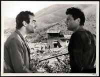 UNDER THE OLIVE TREE 1950 Giuseppe De Santis Raf Vallone STILL #12