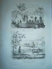 gravure 1839 Iles Mariannes Dumont d'Urville Ruine Ile de Rota Charrue de Guaham