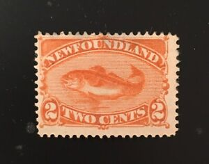 Stamps Canada Newfoundland Sc48 2c red orange Codfish of 1896. See description