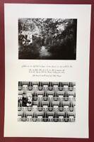 Edmund Kuppel, Die Geschichte vom Wald (…), Offsetdruck, 1983, handsigniert
