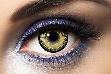 lentilles de couleur doré big eyes 15Mn  1 ans utilisation   contact lenses