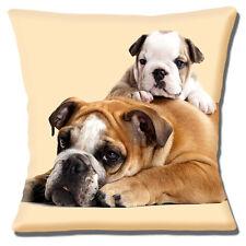"""ENGLISH BULLDOG Adult CUTE PUPPY 'Having a Rest' CREAM 16"""" Pillow Cushion Cover"""