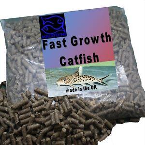 Tropical catfish pellets EXR high protien premium fast growth catfish sinking