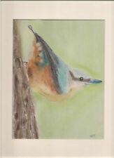 Birds Art Paintings
