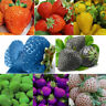 100 pcs Strawberry Seeds Nutritious New Delicious Fruit Vegetable Seed 8 Colors