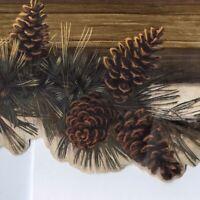 Rustic Pine Cones Wallpaper Border - Die-cut Edge - Chesapeake Borders - SU