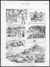 1895 Antique Print - INDIA PANTHER HUNT ILLUSTRED STORY SUBALTERN LETTER (229)