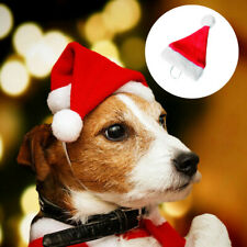 """Christmas Santa Hat 5.5"""" Wide for Pets Dog Cat Puppy & Other Small Animals"""