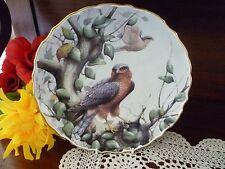 SPODE FINE BONE CHINA ENGLAND BIRDS OF PREY SPARROW HAWK   PLATE