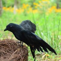 Halloween Crow Prop 3 Pack Black Feathered Crow Fly and Stand Crows Ravens H4O3