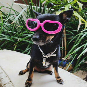 X-Small Puppy Dog Goggle Sunglasses Eye Protection for Chihuahua Maltese Yorkie