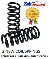 BMW 3 SERIES E46 COUPE AND SALOON| 2 REAR SUSPENSION COIL SPRINGS PAIR X2 *NEW*