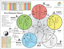 Five Elements Theory of Acupuncture Points Chart 8.5 X 11