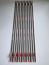 "Bloodsport Hunter 400 Arrows 31"" w/ 2 in. Vanes & Inserts - 12 Pack"