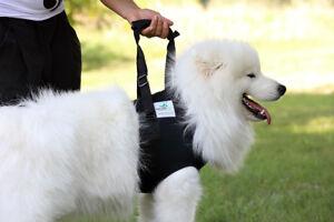 Nature Pet Premium Hunde Tragehilfe /Gehhilfe vorne für ältere oder kranke Hunde
