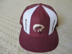 Vintage Michigan Panthers Snapback Embroidered Logo Truckers Cap Mesh Hat USFL *