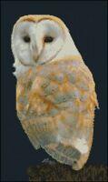 "Barn Owl Counted Cross Stitch Kit 15"" x 8.75"" FREE P&P"