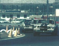 Vintage 8 X 10 1966 Daytona 24 Hours Mustang GT350 & Yenko Stinger Corvair