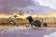DAYLIGHT EXPRESS Phillip Crowe Signed & Numbered w/coa Black Lab Duck Hunting
