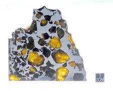 Esquel Pallasite 113.28g slice! Stunning Olivine Crystals