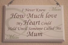 Plaque Never Knew How Much Love My Heart Could Hold Call Me Mum Sign 17cm F1592B