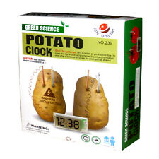 Potato Clock Educational Green Science Project Experiment Kit kid DIY HomeSchool
