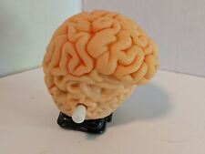 Walking Brain Windup Novelty Toy gag gift