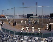1969 Montreal Expos Batting Practice Jarry Park Color 8 X 10 Photo Pic